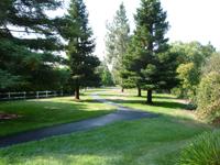 greenbrook-danville-california