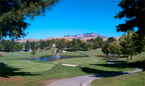 Crow Canyon Country Club Homes Danville