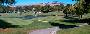 Crow Canyon Country Club Homes for Sale